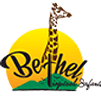Bethel Tropical Safaris